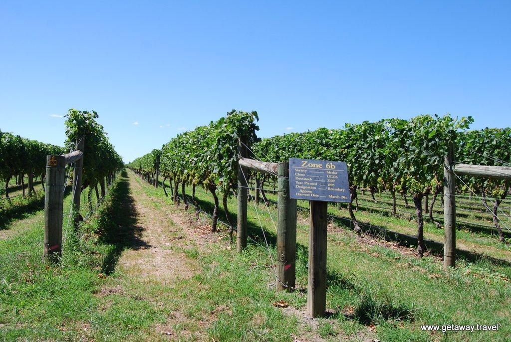 Te Awa Winery Hawke S Bay New Zealand Getaway Travel Llc