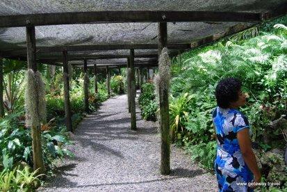 02-Garden of the Sleeping Giant Fiji 2-2-2011 2-54-17 PM