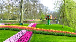 3-Keukenhof gardens-029