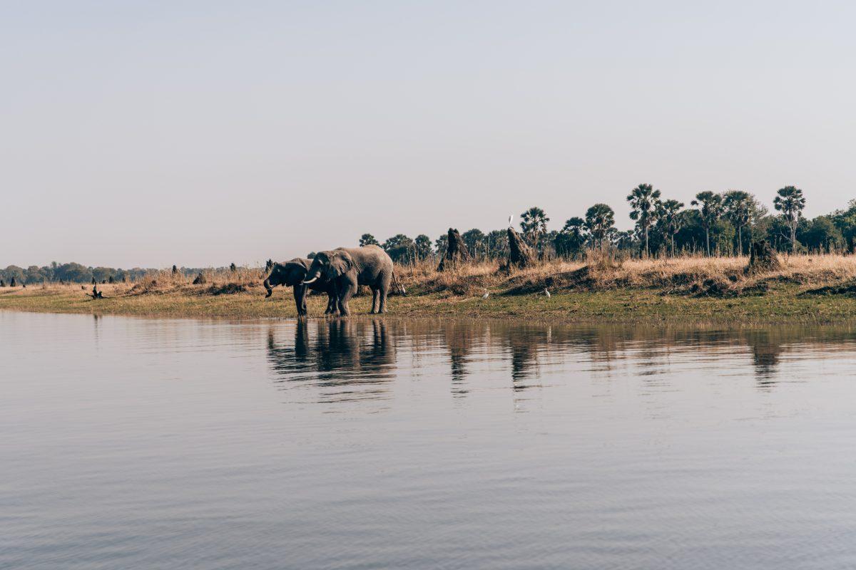Malawi Safari and Charity Trip Travel Girls Getaway