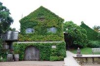 03-Stonyridge winery Waiheke Island New Zealand 2-4-2011 2-20-35 PM