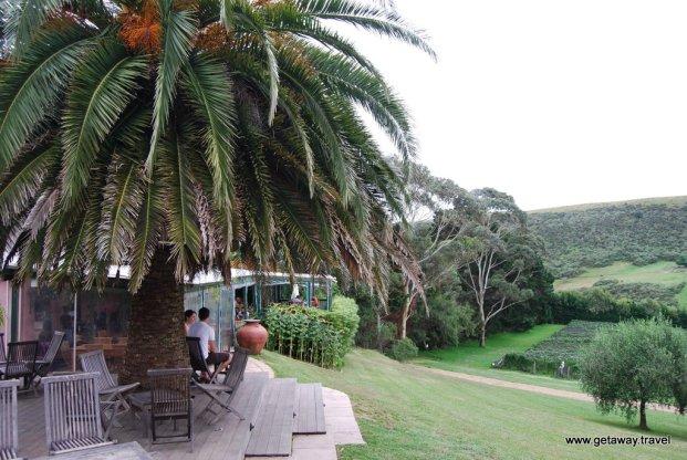 11-Stonyridge winery Waiheke Island New Zealand 2-4-2011 2-52-41 PM