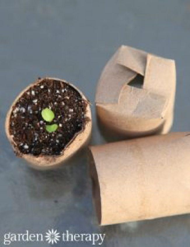 Wonderful craft making using paper #toiletpaperrollcrafts #diytoiletpaperroll #toiletpaper