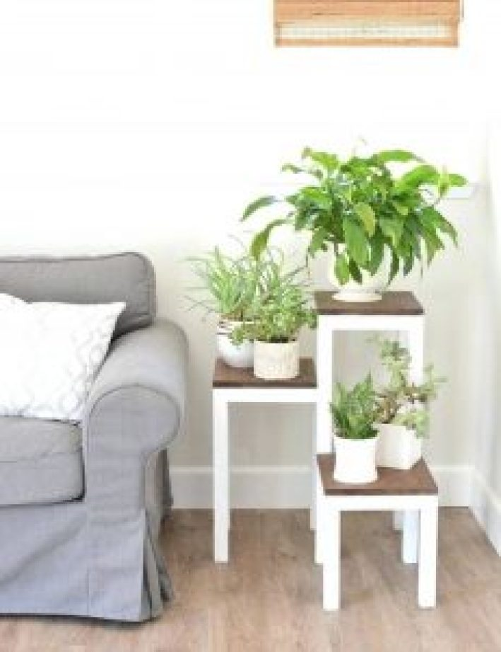 Eye-opening iron plant stand #diyplantstandideas #plantstandideas #plantstand