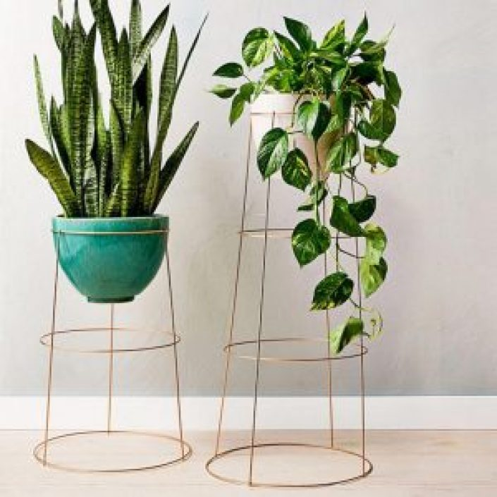 Spectacular indoor hanging plant stand #diyplantstandideas #plantstandideas #plantstand