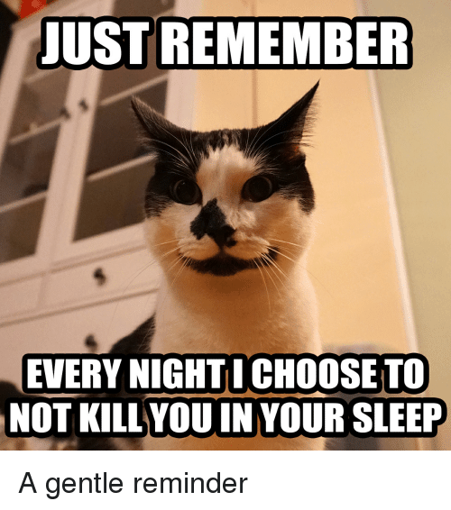 just remember every night I choose to not kill you in your sleep