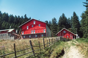 Two Red Houses