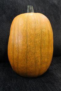 pumpkin, pumpkin carving, pumpkin gutter