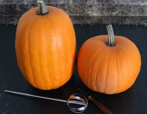 pumpkins, halloween, pumpkin gutting, pumpkin carving, the pumpkin gutter