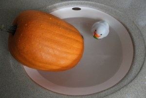 pumpkin, pumpkin carving, rubber duck