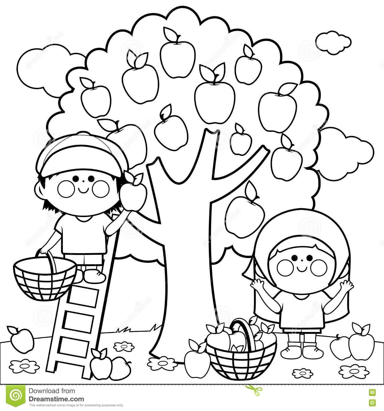 Apple Core Coloring Page At Getcolorings