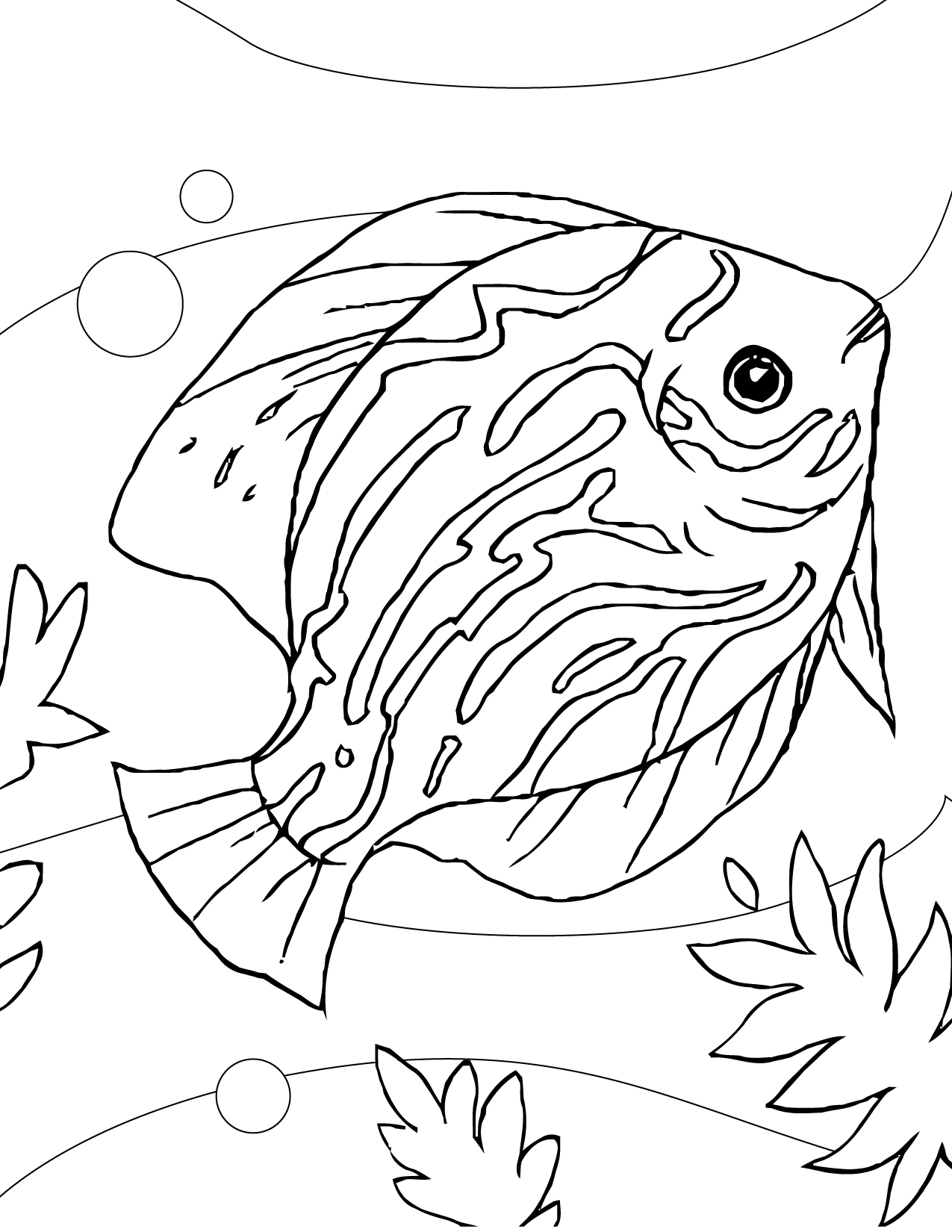 Aquarium Fish Coloring Pages At Getcolorings