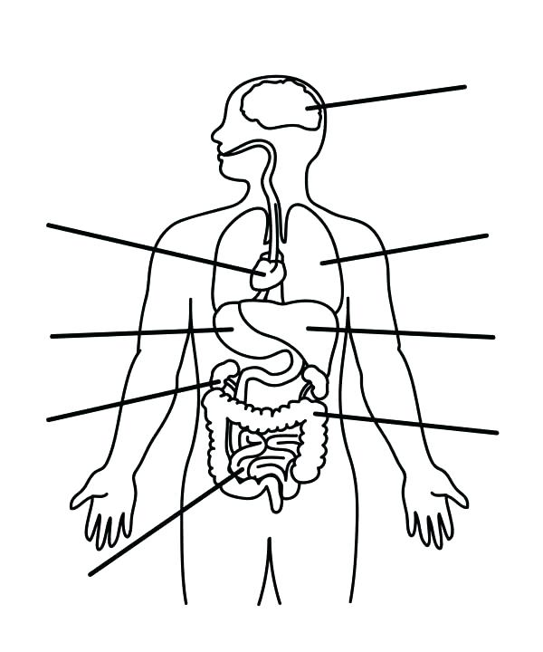 Body Parts Coloring Pages at GetColorings.com   Free ...