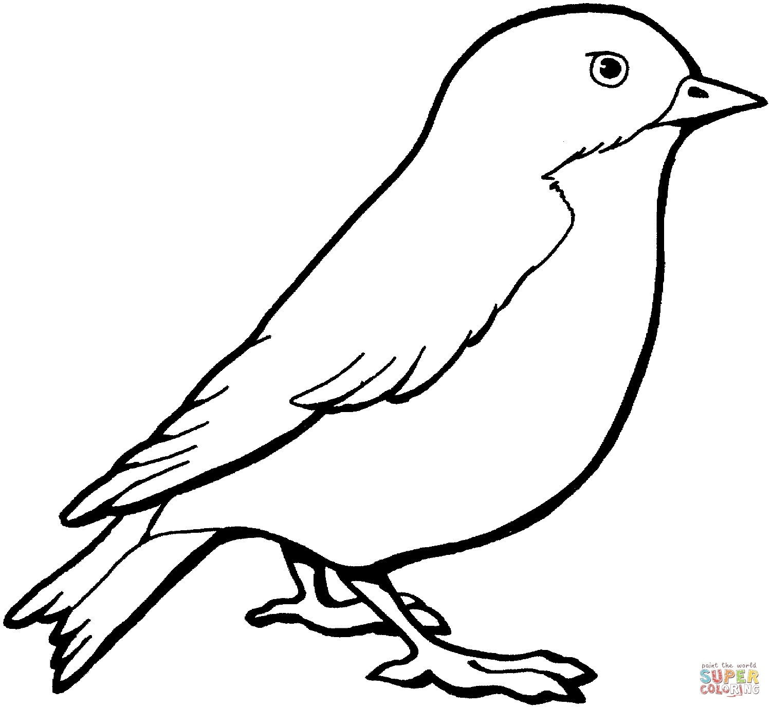 Canary Coloring Page At Getcolorings