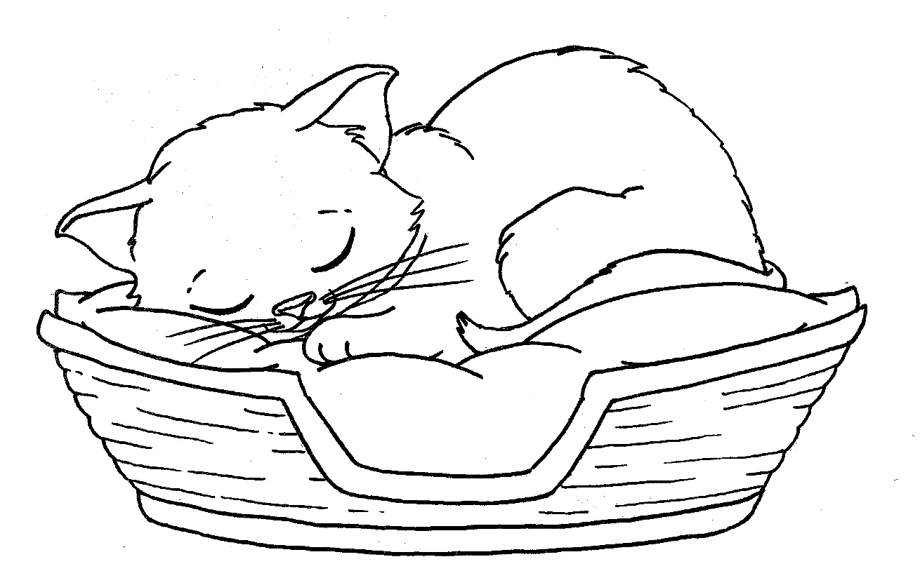 Cat And Dog Coloring Pages To Print At Getcolorings