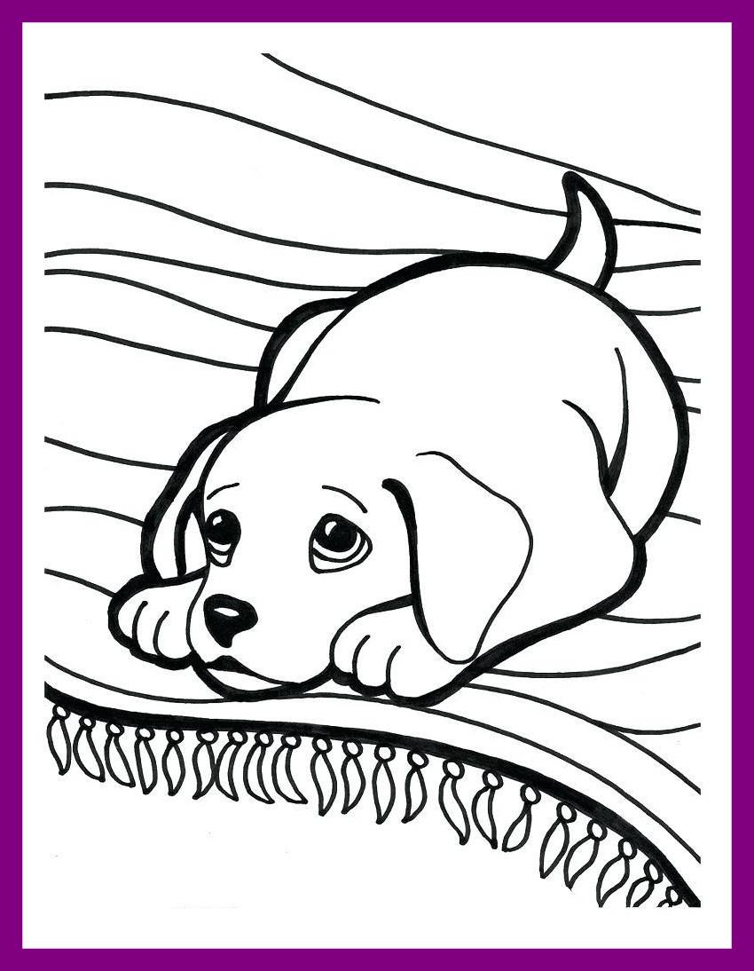 Golden Retriever Puppy Coloring Pages   Novocom.top
