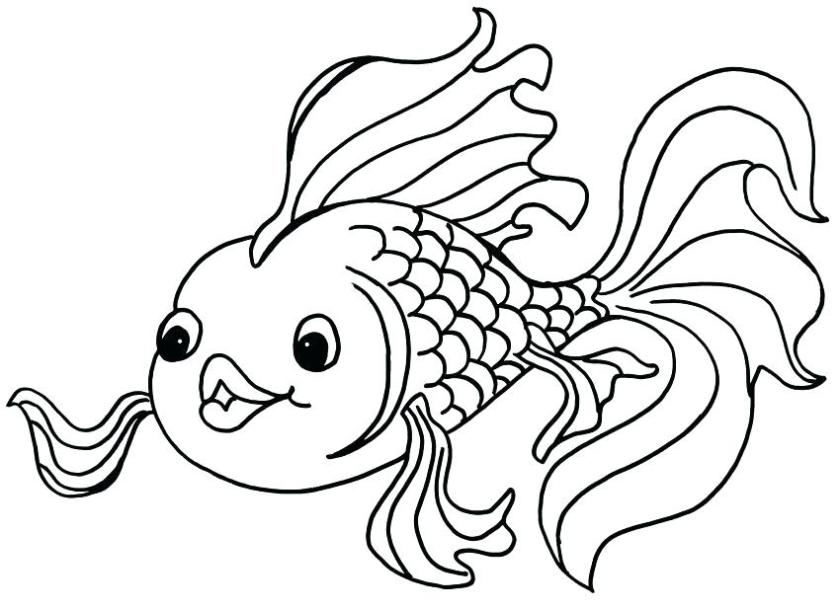cute fish coloring pages at getcolorings  free