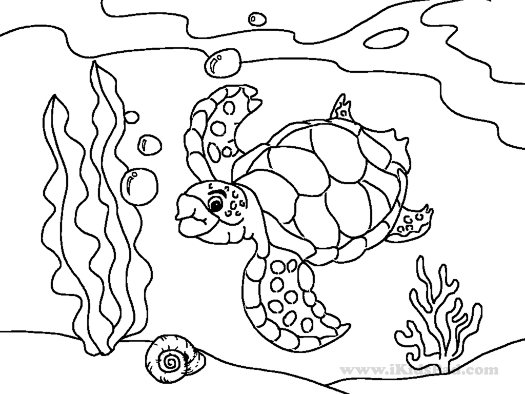 Cute Sea Animal Coloring Pages At Getcolorings
