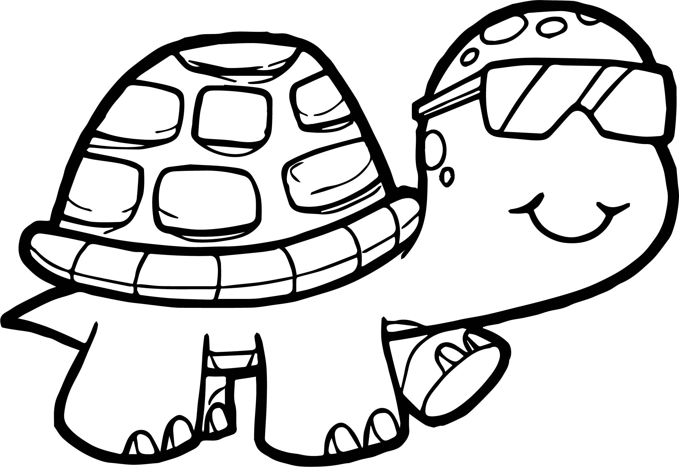 Detailed Turtle Coloring Pages At Getcolorings