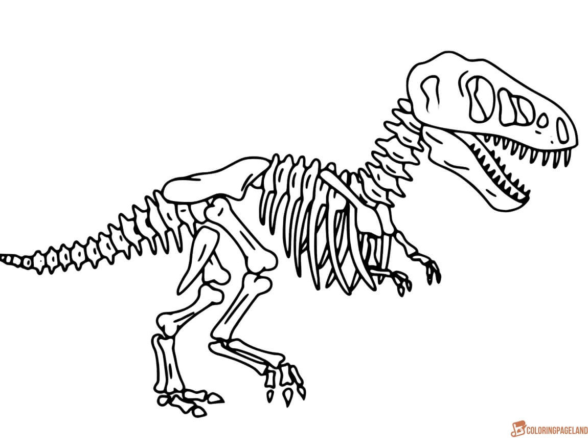 Dinosaur Bones Coloring Page At Getcolorings