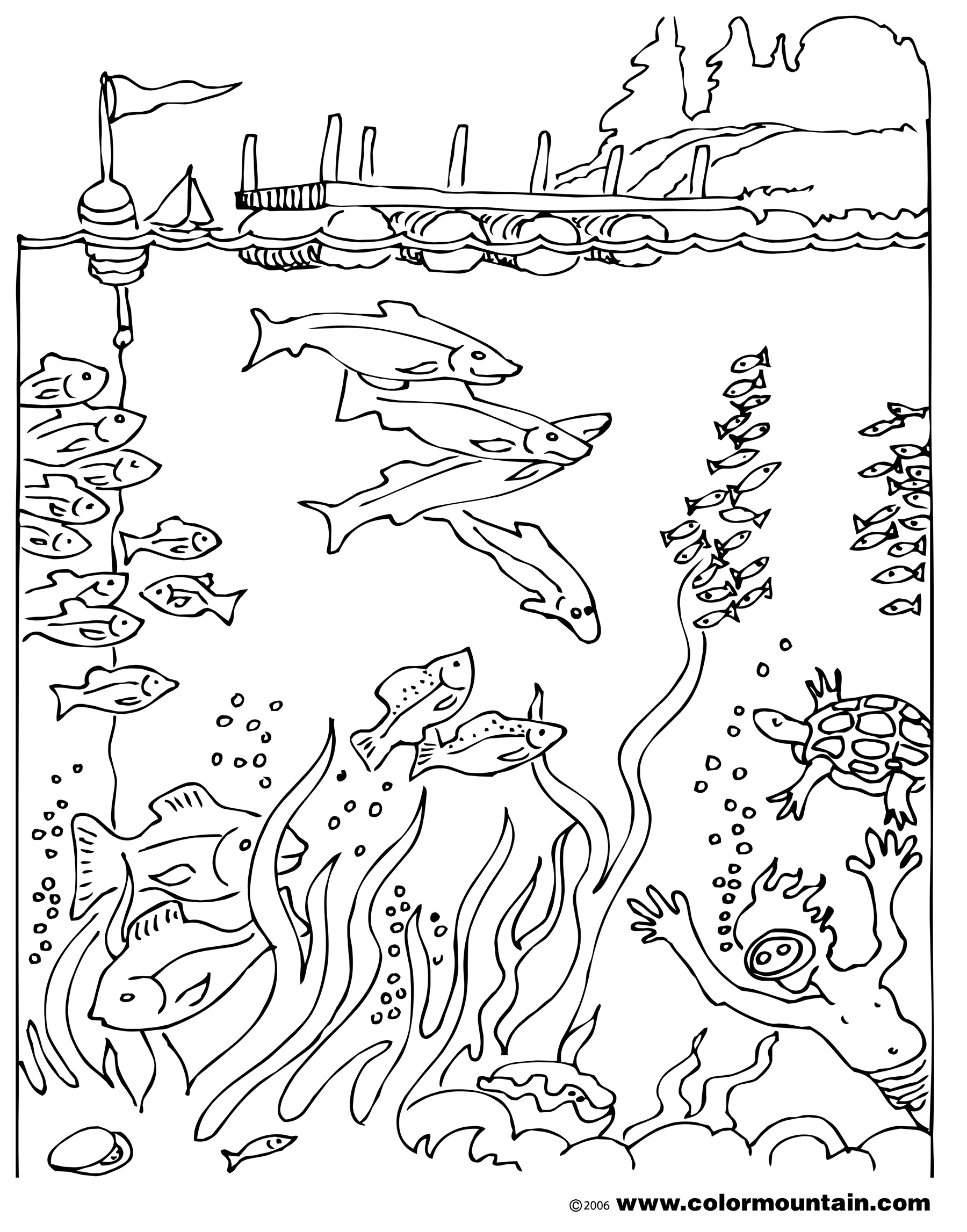 Responsibility Coloring Pages At Getcolorings