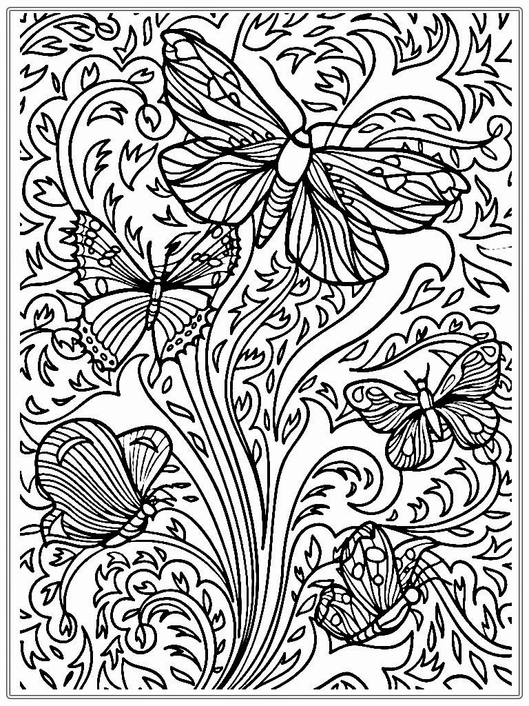Detailed Butterfly Coloring Sheet Novocom Top