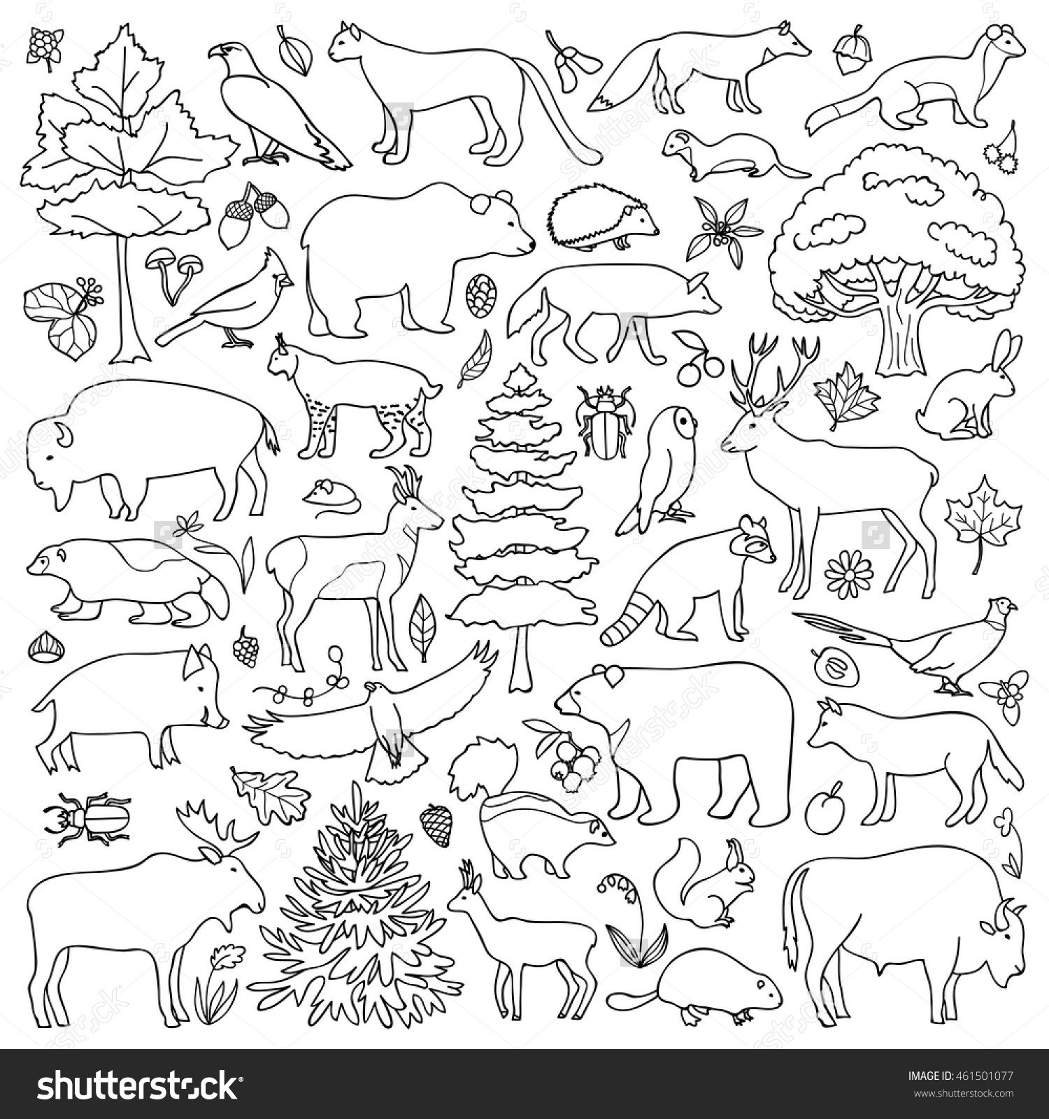 Forest Coloring Pages At Getcolorings