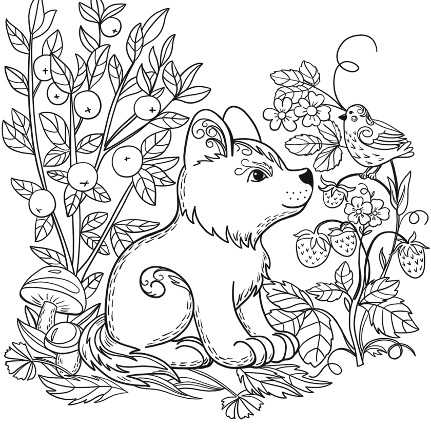 forest coloring pages for kids at getcolorings  free
