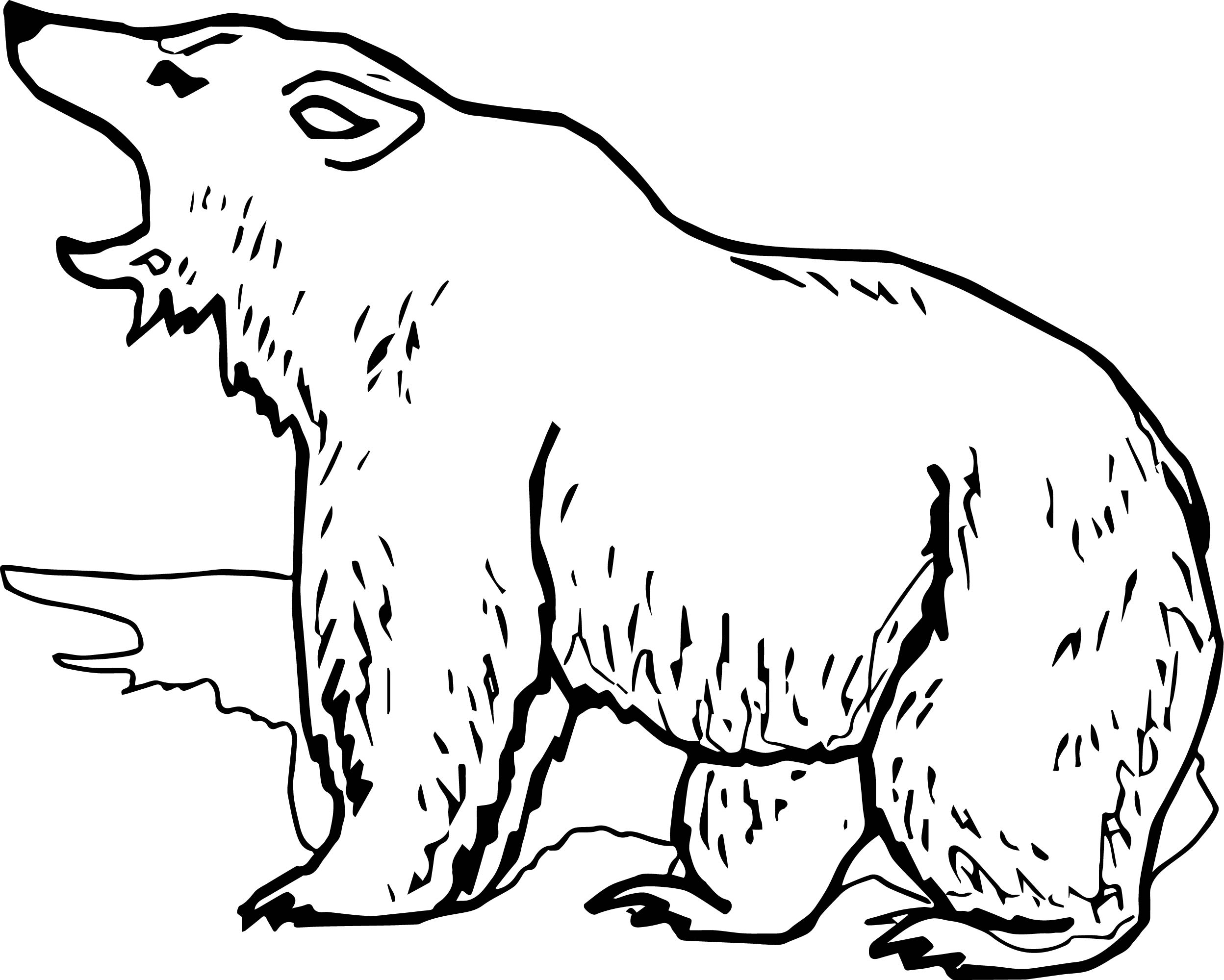 Grizzly Bear Coloring Pages At Getcolorings