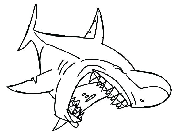 jaws coloring pages at getcolorings  free printable