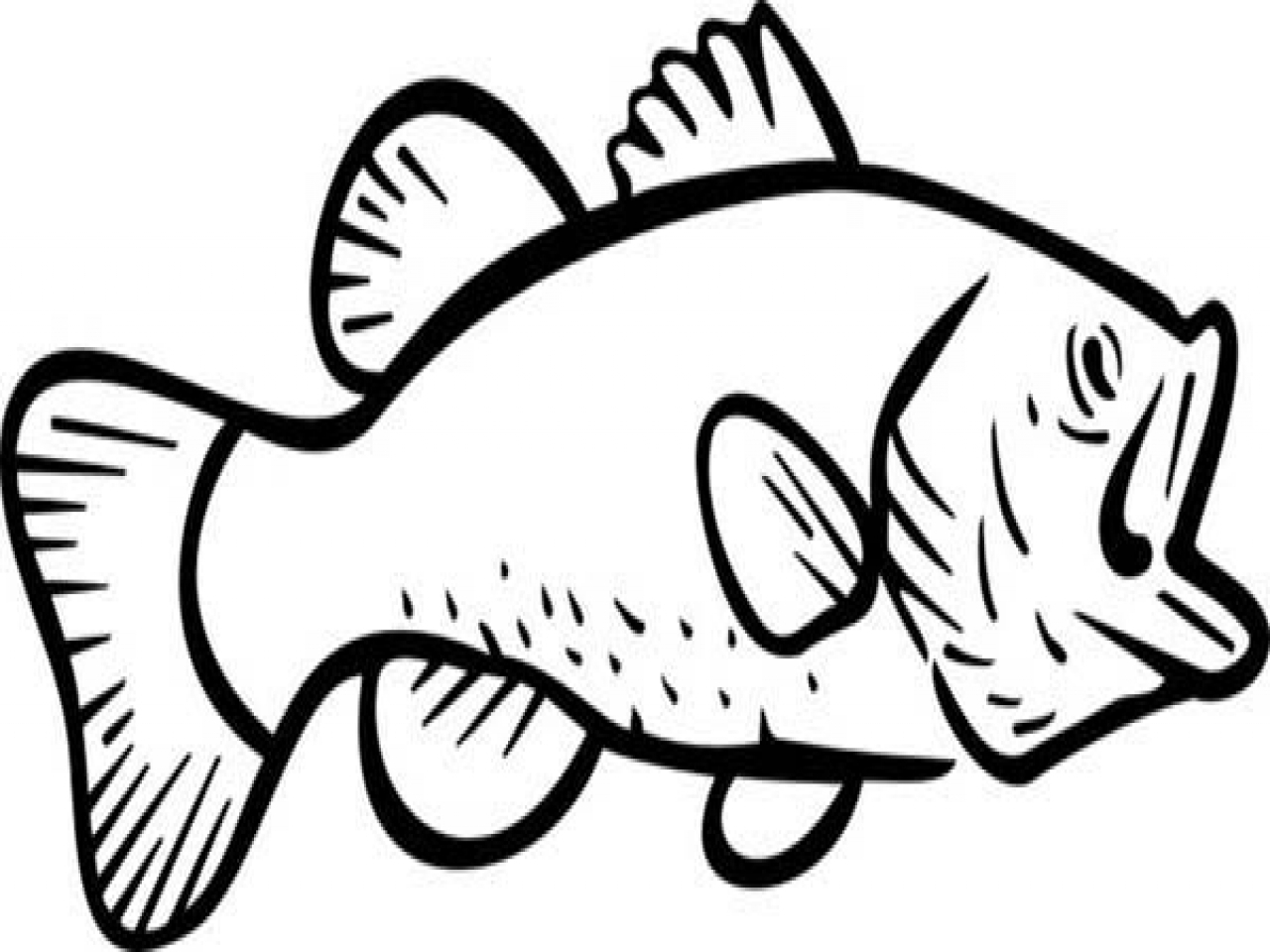 Jumping Fish Coloring Pages At Getcolorings