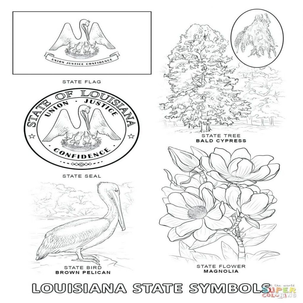 Texas State Symbols Coloring Pages At Getcolorings