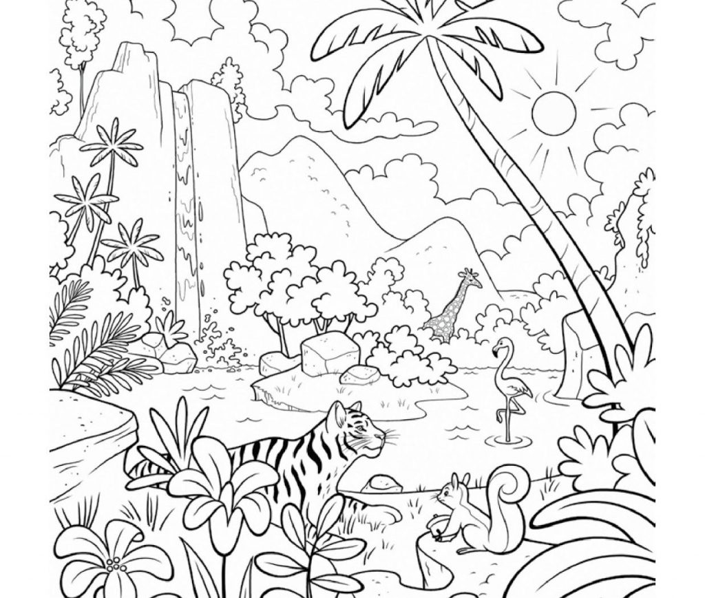 Layers Of The Rainforest Coloring Page At Getcolorings