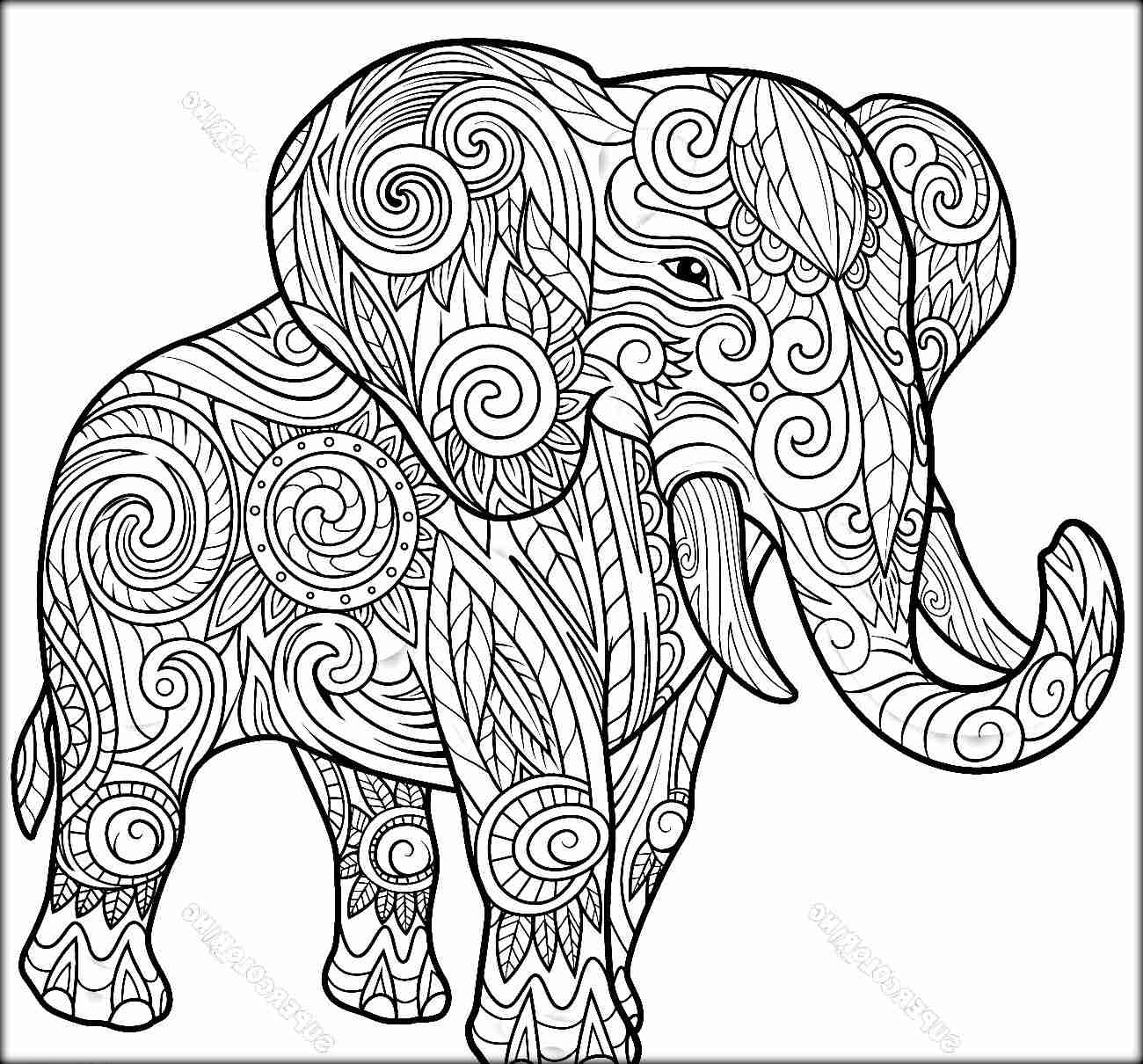 Mandala Elephant Coloring Pages At Getcolorings