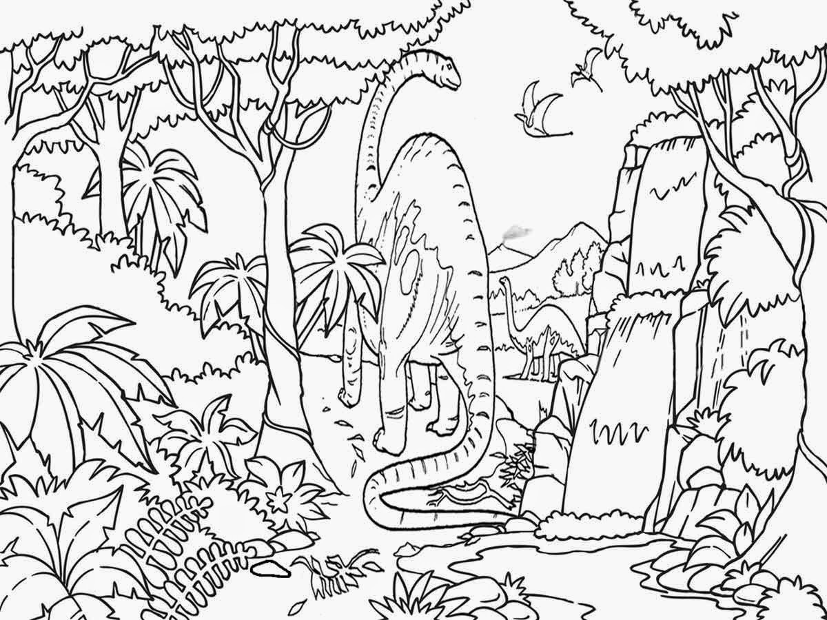 Printable Rainforest Coloring Pages At Getcolorings