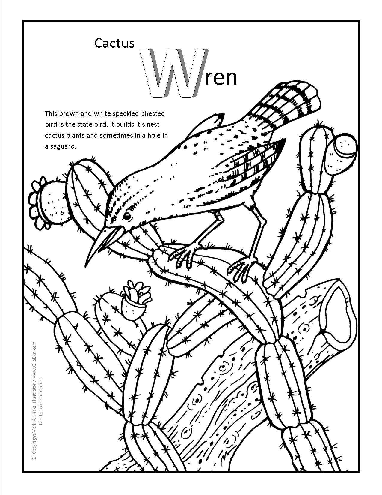 Rango Coloring Pages At Getcolorings