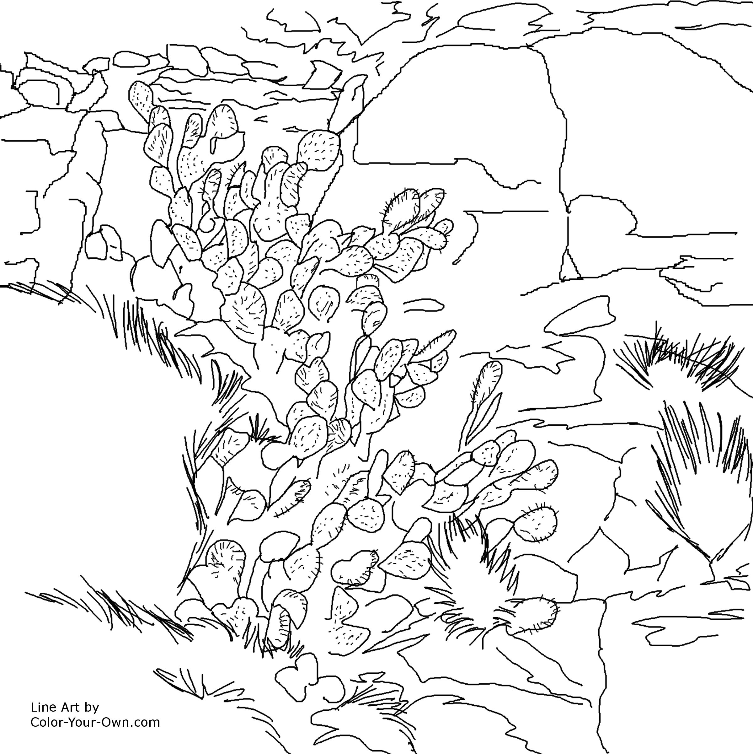 Rock And Mineral Coloring Pages At Getcolorings