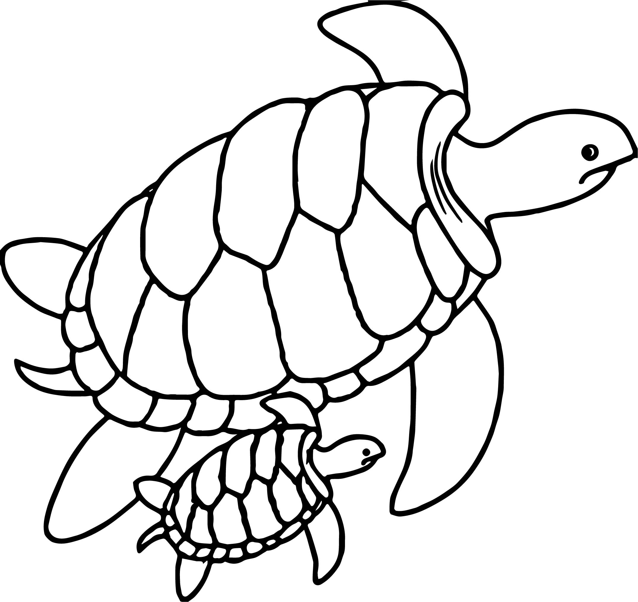 Sea Turtle Printable Coloring Pages At Getcolorings