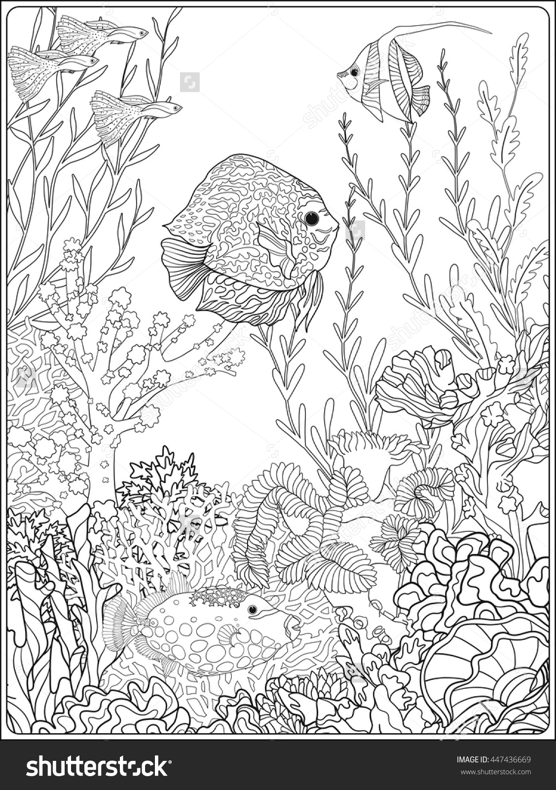Sea World Coloring Pages At Getcolorings