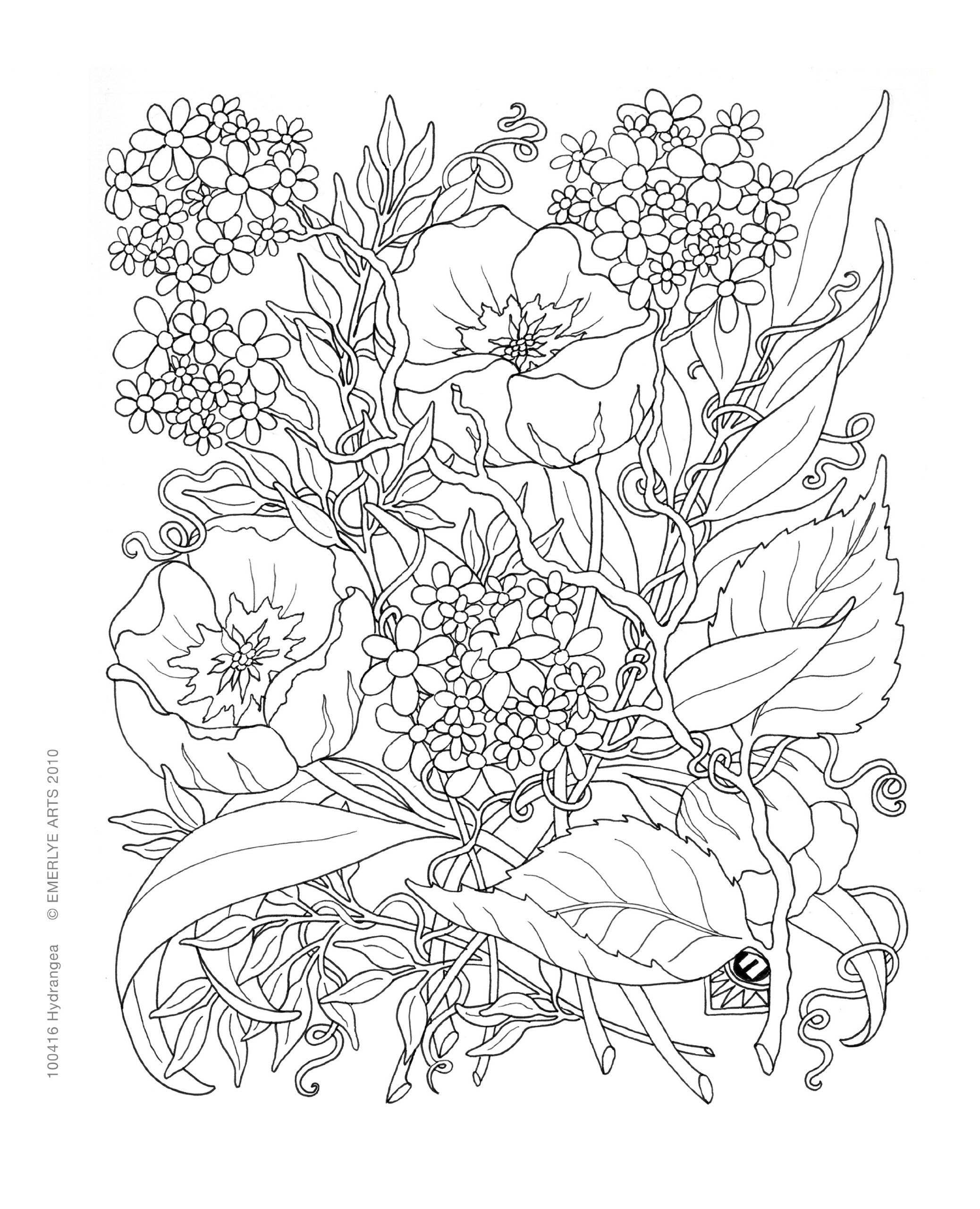 Secret Garden Free Coloring Pages At Getcolorings