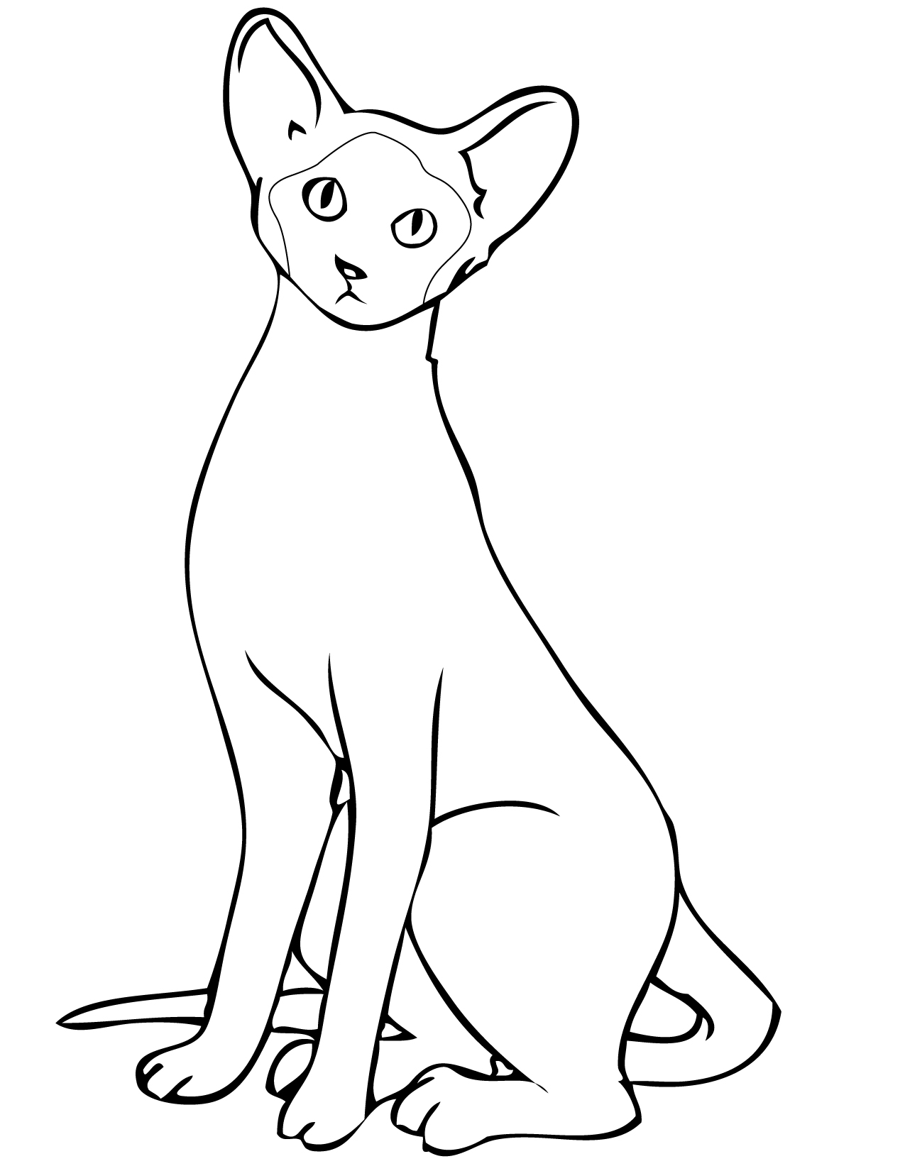 Siamese Cat Coloring Page At Getcolorings