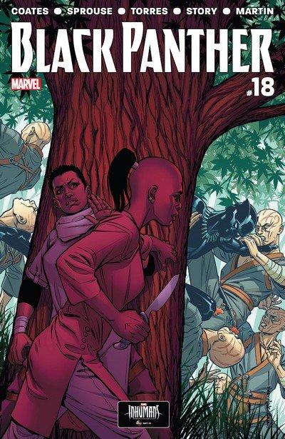Black Panther #18 (2017)