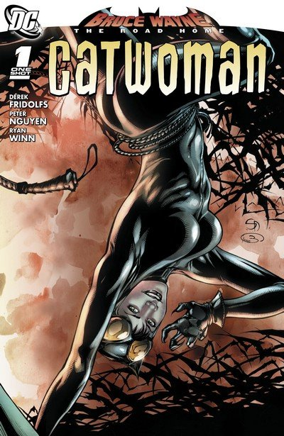 Bruce Wayne – The Road Home – Catwoman #1 (2010)