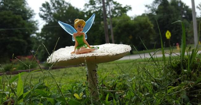 Tinkerbell on Mushroom
