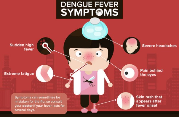 How Dengue Could be Diagnosed