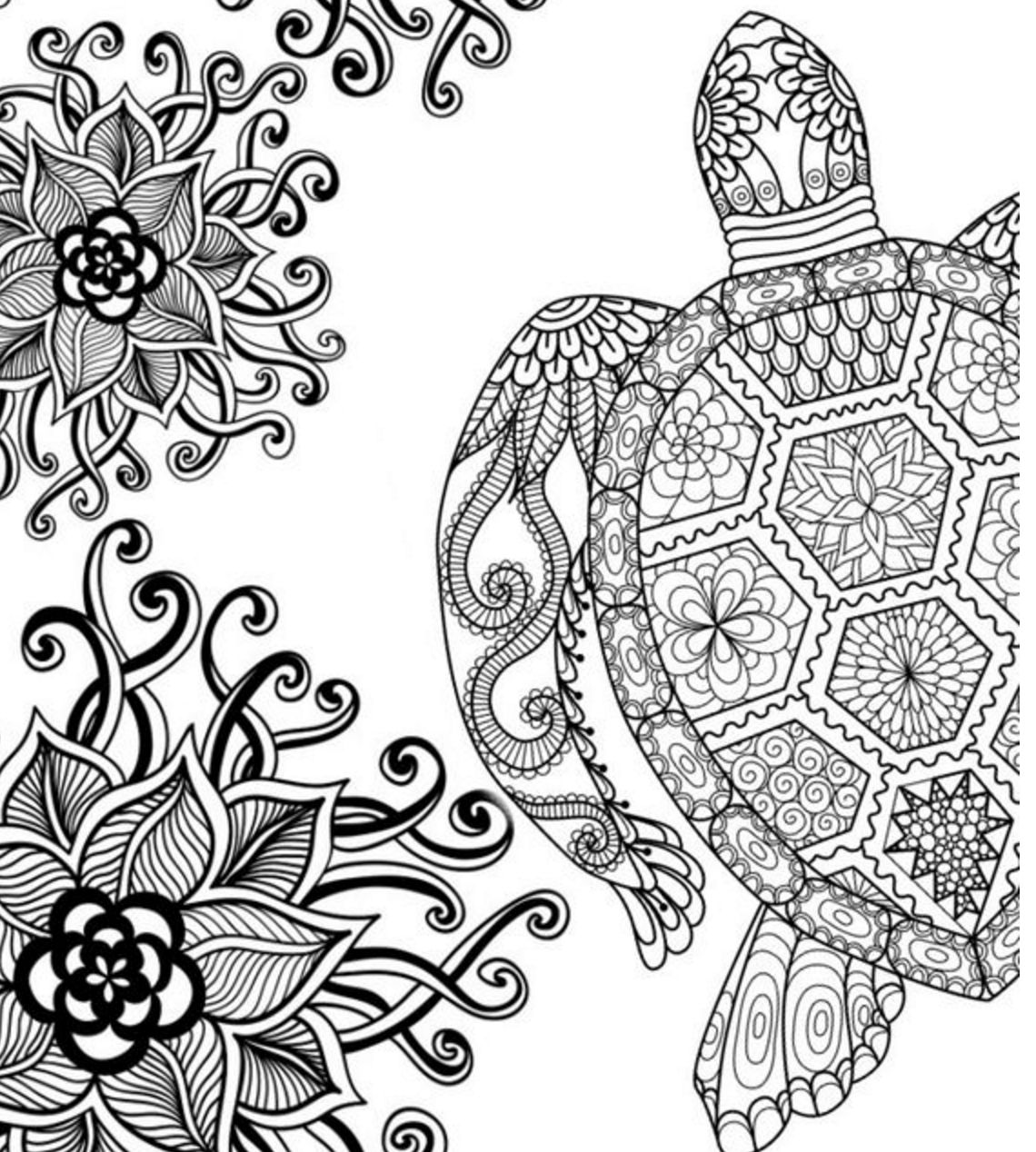 Adult Coloring Pages Turtle At Getdrawings