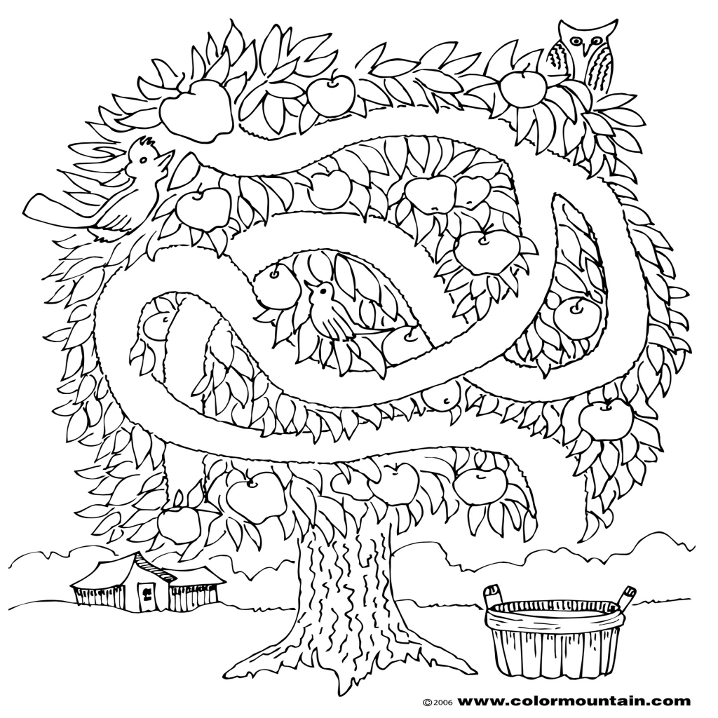 The Best Free Activity Coloring Page Images Download From