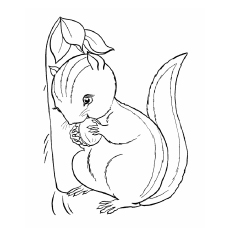 chipmunk coloring pages # 33