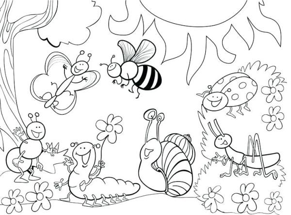 bug coloring page # 27