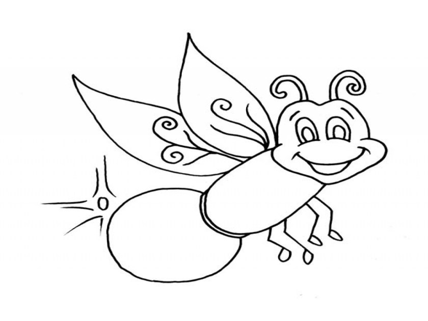 firefly coloring page at getdrawings  free for
